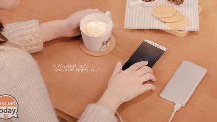 Codice Sconto – Xiaomi New 10000mAh Power Bank 2 Dual USB 18W Quick Charge 3.0 a 13€