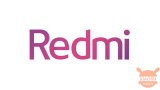 Redmi: story of an announced success. 2020 was the year of the brand