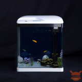 Xiaomi launches SOBO, the ready-to-use, economical and functional aquarium